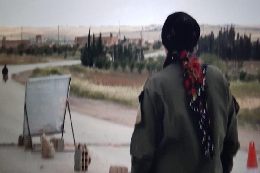 تلخیِ یک پایان: پشهی حلب